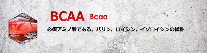 バルクアップHMBプロのBCAA