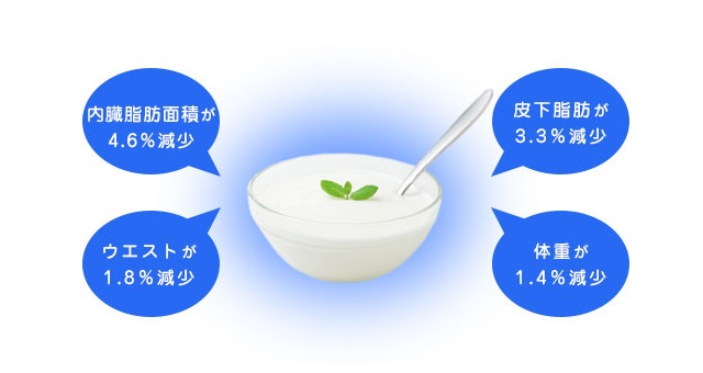 カルグルトの内臓脂肪減少効果
