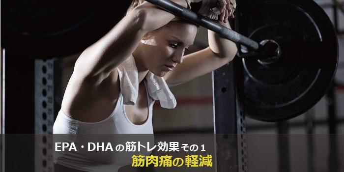 epaとdhaの筋トレ、筋肉への効果1