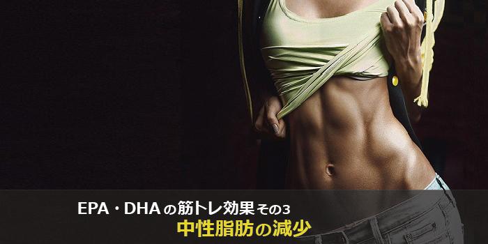 epaとdhaの筋トレ、筋肉への効果3