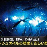 EPA/DHAサプリ(フィッシュオイル)