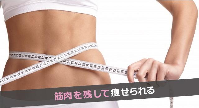 プロテインダイエットで筋肉付ける