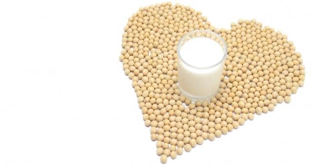 ソイプロテインのタンパク質量