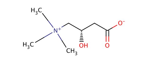 Lカルニチンの化学式